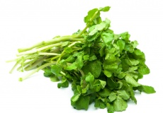 Local Organic Watercress