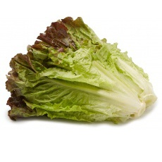 Lettuce, Red Leaf