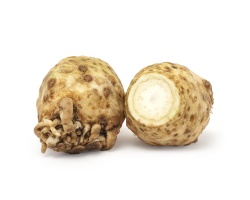 Celeriac Root -1 Large