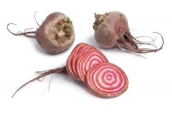 Beets, Candy Cane (ON) - 1 lb.Beets, Candy Cane (Aylmer) - 1 lb.