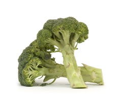 Broccoli  - 1 Bunch