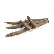 Burdock Root (ON)