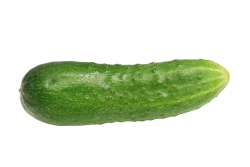 Cucumber, Field - Each