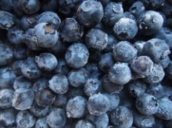 Blueberries - Flat Of 12 Pints