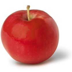 Apples, Ida Red (ON) .ea